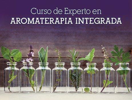 experto-aroma-web