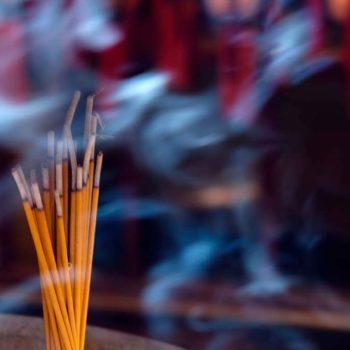Historia del Aroma y su relación con la Mente