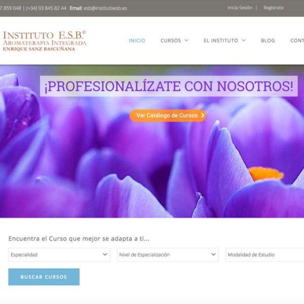 Empezamos el 2017 con nueva web del Instituto ESB