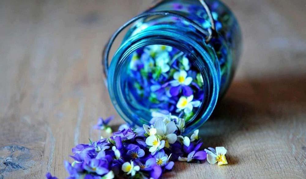 cursos perfumeria natural