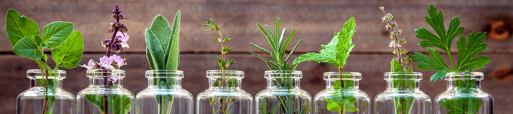 curso experto en aromaterapia