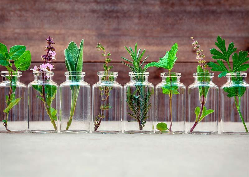 Curso experto/a en aromaterapia integrada