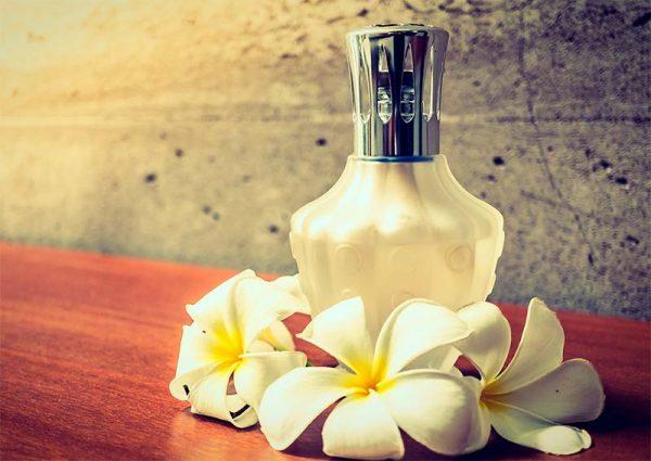 Curso Diplomado en Arte en Perfumeria Natural Vegetal