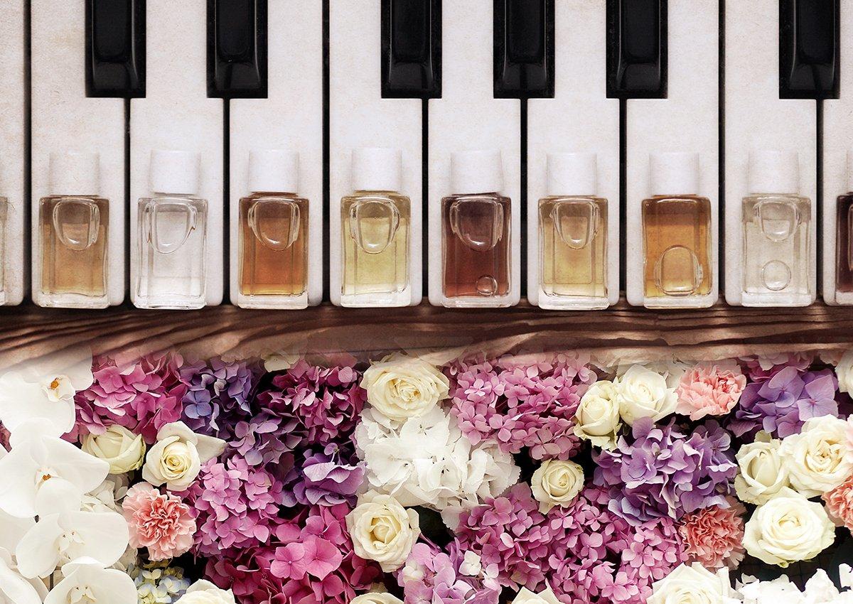 Máster Europeo en Perfumería Natural y Aromaterapia Holística