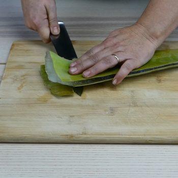 Cómo hacer gel natural de aloe vera